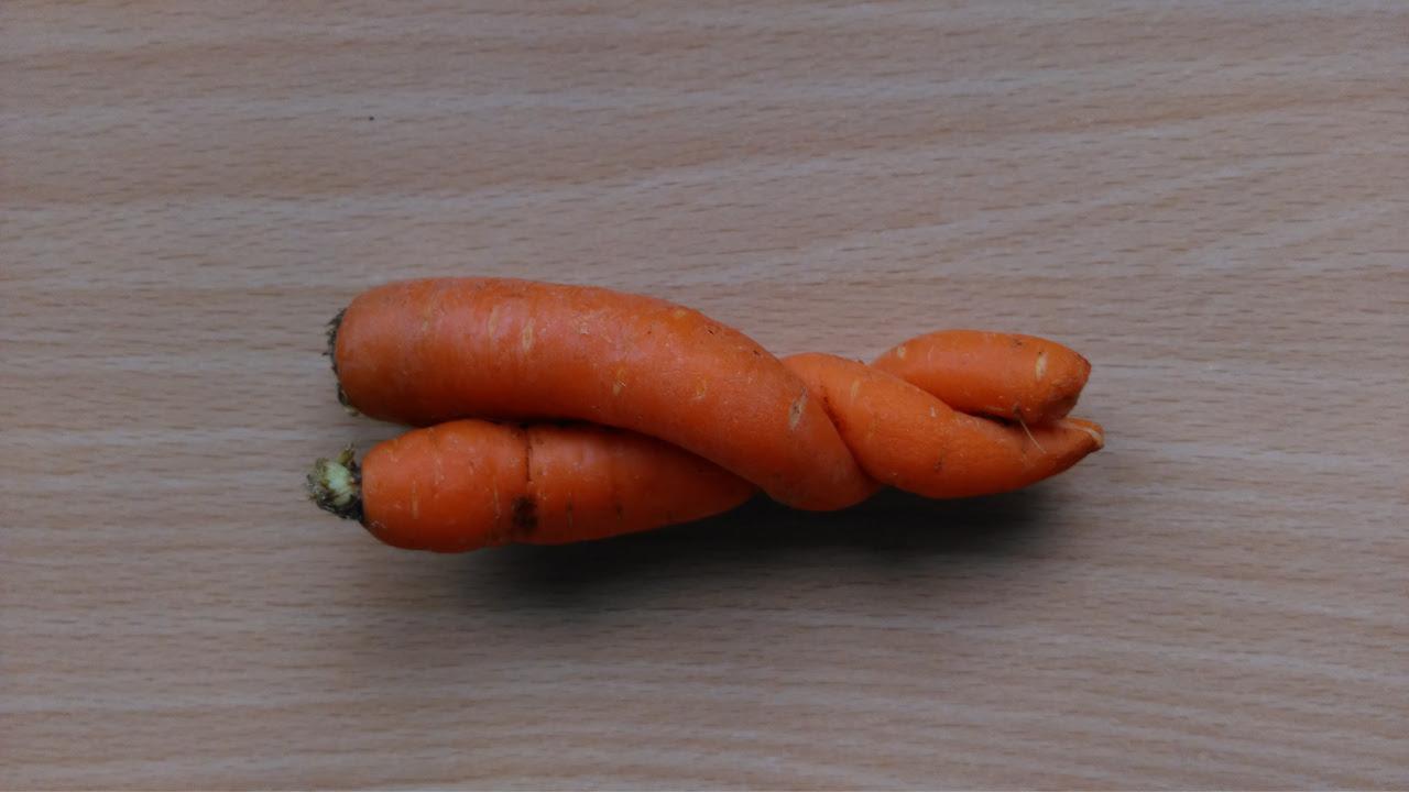 krummes Gemüse, Möhren, Gemüsekiste Abo, bio
